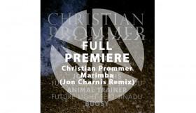 christian prommer marimba 1