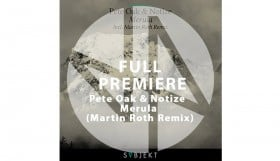 Pete Oak & Notize - Merula (Martin Roth Remix) 1