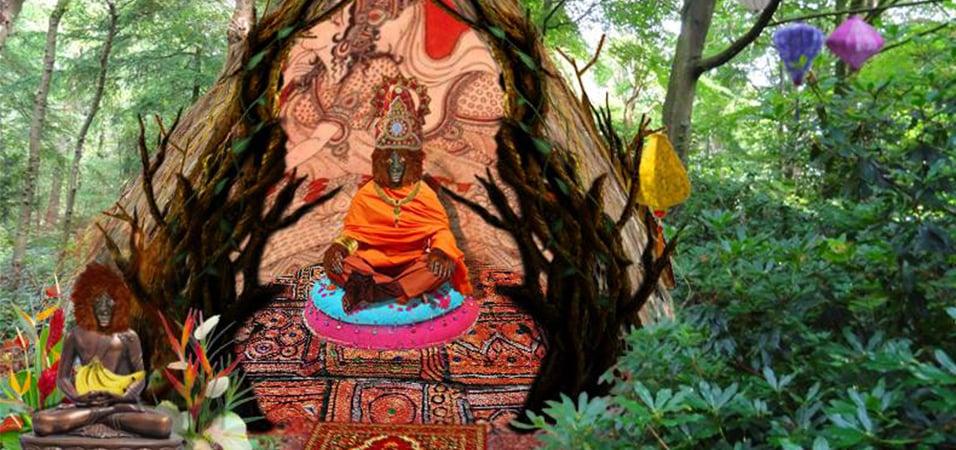 restore-sumatra-borneo-rainforest-in-amsterdam
