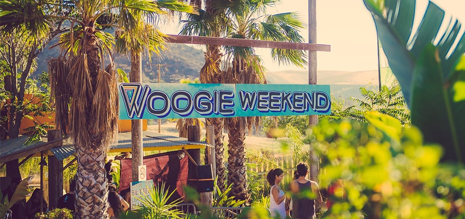 preview-woogie-weekend-featured