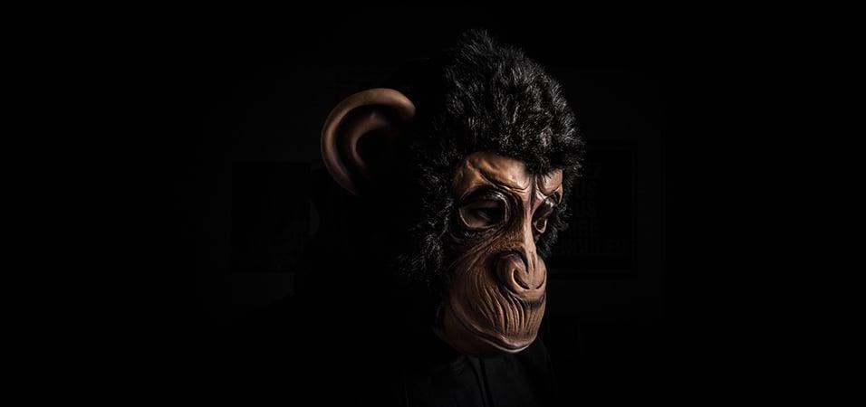 free-download-le monkey-savana-original-mix