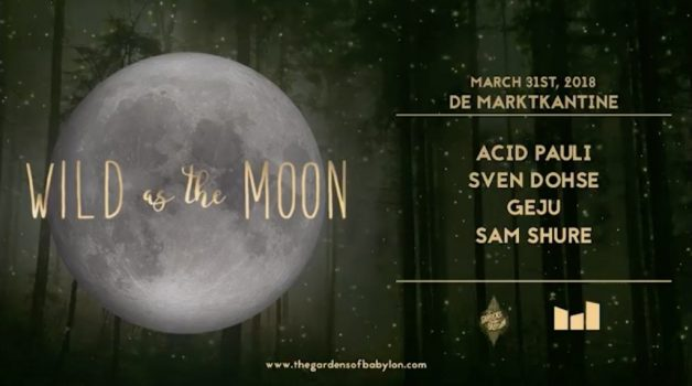 wild-moon-31-march-acid pauli-in-post