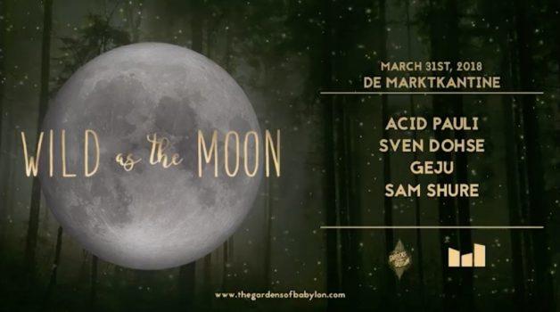 wild-moon-31-march-acid pauli-in-post